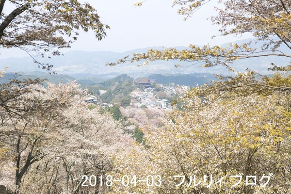 SDIM0193.jpg