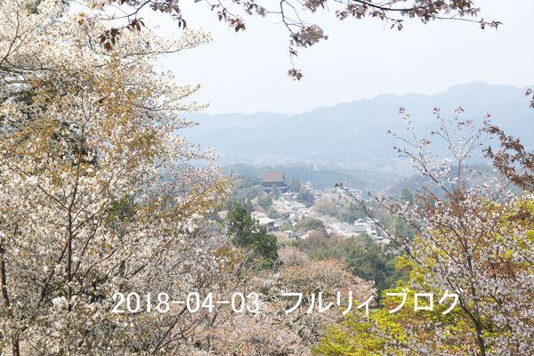 SDIM0196.jpg