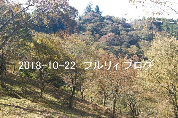 SDIM0274.jpg