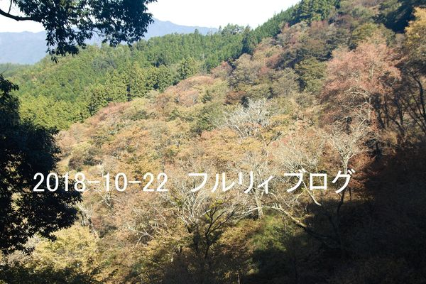 SDIM0277.jpg